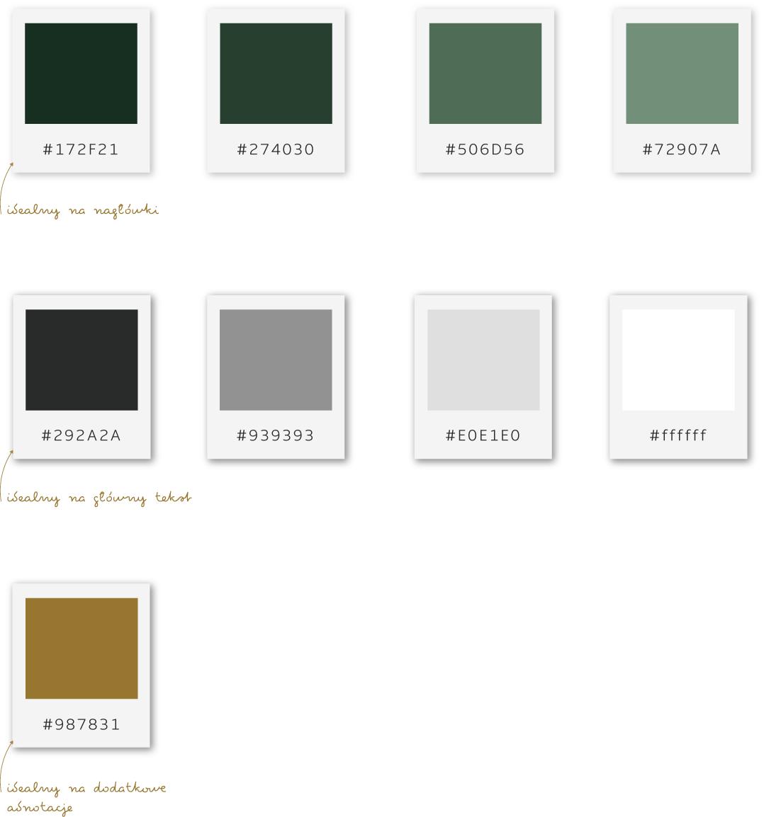 poleta kolorów identyfikacja wizualna logo